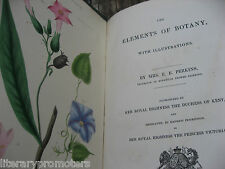 THE ELEMENTS OF BOTANY By MRS E PERKINS With Illustrations 1837 Botanical Flower