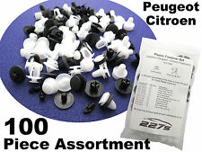 100 Piece Plastic Trim Clip Assortment- Common Fastener Set for Citroen Peugeot