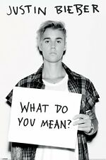 JUSTIN BIEBER Poster - WHAT DO YOU MEAN? - New Bieber Music Poster PP33738
