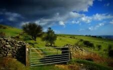 GUIDED MEDITATION CD COUNTRYSIDE RETREAT, WOODS, SUMMERS DAY VISUALISATION