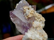 SPECTACULAR COLLECTOR___Jacksons Cross Roads / Amethyst Quartz Crystal Cluster