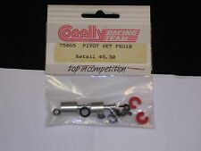 Vintage 1/10 Corally Pro10 Pivot Set PK Model Racing 75065