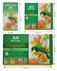 TrueColor Assorted 12/24/36/48 Water Color Drawing Pencil Tin Set Stationery