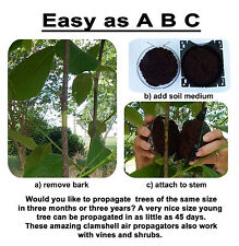 Clamshell Air Propagation  & Cloning Kit - Tree, Vine & Shrub - FAST RESULTS   S