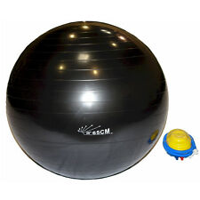 WORKOUTZ BLACK 65 CM GYM BALL AND FOOT PUMP COMBO SET STABILITY PHYSIO EXERCISE