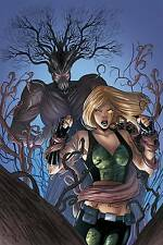 Grimm Fairy Tales Presents Robyn Hood V2 #12 - Cover B - NM+ or better