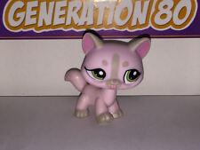Littlest PetShop CHAT MAINE COON rose gris 1326 H044 CAT Pet Shop