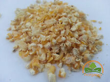 20 Lbs Cracked Corn for Ducks, Chicken, Rabbits by Prorganics
