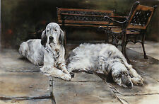 "ENGLISH SETTER GUN DOG FINE ART LIMITED EDITION PRINT - ""After the Walk"""