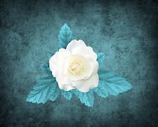 Teal White Rose Wall Decor Photo Art Surreal Photography Turquoise Picture & Mat