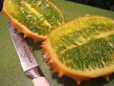 kiwano melon-Horn melon-jelly melon-10 Finest Seeds