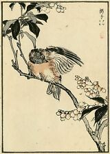 1884 Kono Bairei Orig JAPANESE WOODBLOCK PRINT Birds and Flowers - King Fisher