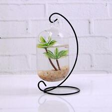 Clear Fish Tank Glass Flower Vase Terrarium Container Capsule Hanging Decor