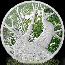 "MAPLE TREE  ""Spring""  CANOPY  2013 Canada $20 Silver Coin  FIRST IN SERIES"