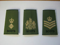 Royal Regiment of Scotland Rank Slide in Olive with Gold Embroidery - Military
