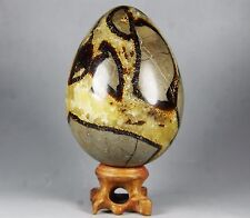 468g Polished DRAGON SEPTARIAN Egg sphere Crystal w/Rosewood Stand Madagascar