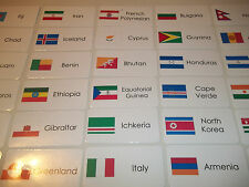 245 World Flags flash cards. Preschool and Pre Kindergarten learning activity.