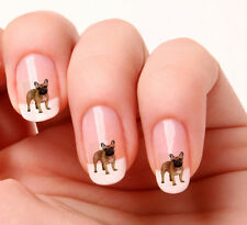 20 Nail Art Stickers Transfers Decals #652 - French Bull Dog Just peel & stick