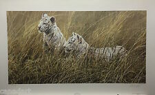 Alan HUNT LTD art print Wating White Tiger Cubs Certificate Authenticity folder