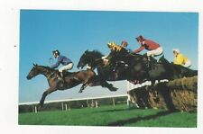 Hurdlers At Ascot Horse Racing Postcard 467a