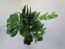 Pack of 7 Assorted Succulent Green Plants - Artificial Cacti Succulents
