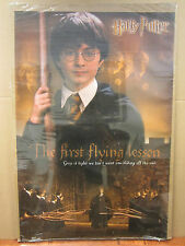 Harry potter Flying lessons movie poster Original 2406