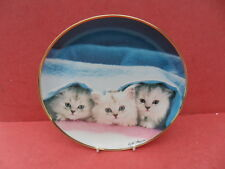 Franklin Mint Cat/Kitten Design, Peek - a - Boo - Collector Plate