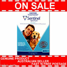 Sentinel Spectrum for Large Dogs 22-45kg 6 Pack Chew Blue Exp 04/18  6pk pk