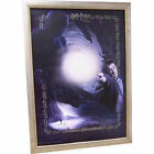 Harry Potter Limited Edition Expecto Patronum Lithograph Art Print