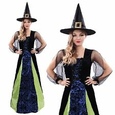Adult Sorceress Womens Ladies Wicked Witch Halloween Fancy Dress Costume 8-16