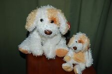DIGGS the Curly Hair DOG  - Ty Beanie Baby & BUDDY - MWMT - Fast Shipping