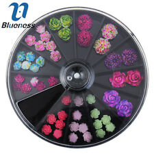 Blueness 1 Wheel Mix Colored Resin Flower 3D Nail Art Glitter Rhinestones ZP210