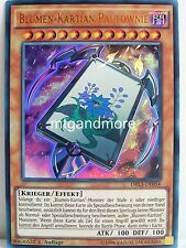 Yu-Gi-Oh - 1x Blumen-Kartian Paulownie - DRL3 - Dragons of Legend Unleashed Ultr