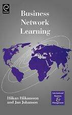 Business Network Learning (International Business and Management)