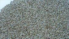 100g 3.5oz Ajwain Seeds Carom Best Quality Thymol
