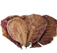 Indian Almond Catappa Leaves 50g for Aquarium fish Tank best water conditioners