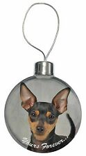 Miniature Pinscher 'Yours Forever' Christmas Tree Bauble Decoration G, AD-MP1yCB