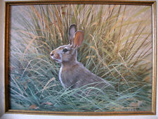 An Original Painting of a Cottontail Rabbit Hiding in Brush, Ron Raymer, COA