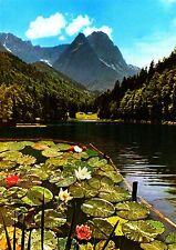 Garmisch-Partenkirchen , Riessersee mit Waxenstein , Ansichtskarte