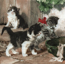 4 lose Servietten  Napkins Kitties Meeting (1083) Decoupage, Serviettentechnik
