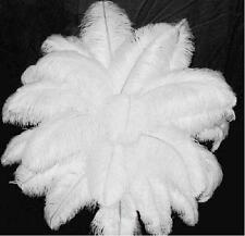 "50PCS 12-14"" Creative Home Wedding Party Decor Ornaments Ostrich Feathers White"