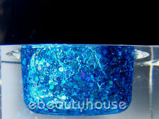 20 ml Sapphire Glitter Color UV Gel Nail Art #065C