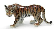 R362 - Northern Rose Miniature - Tiger Looking Left