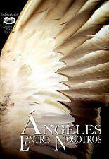 Angels Among Us (DVD, 2006, Spanish Version)