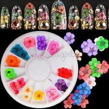 60pcs True Dried Flower Nail Art UV Acrylic Sticker Tips 3D Decoration 12 Color