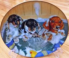 Danbury Mint Dachsund DOXIE DACHSHUND SUDSY TRIO Weiner Dog Limited Plate