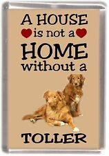 "Nova Scotia Duck Toller Fridge Magnet ""A HOUSE IS NOT A HOME"" by Starprint"