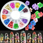 36pcs 12 Color Dried Manicure Dry Flower Nail Art Tips Decoration Wheel