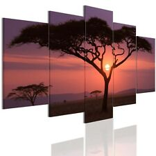 Large African Sunset Abstract Poster HD Canvas Prints Wall Art Painting Unframed