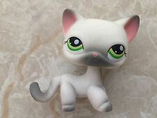 Littlest Pet Shop RARE Standing Cat #125 Short Hair Grey Gray Siamese